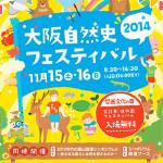 [ お仕事 ] 大阪自然史フェスティバル2014@大阪市立自然史博物館 チラシ・ポスターデザイン