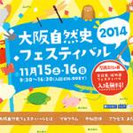 [ お仕事 ] 大阪自然史フェスティバル2014@大阪市立自然史博物館 Webサイト